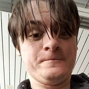 ibxtoycat profile photo