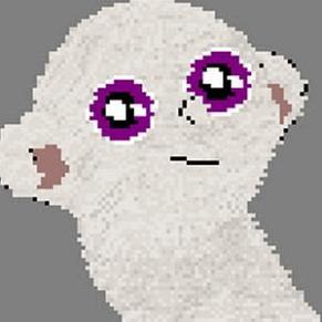 moonkitti profile photo